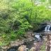 宮城の山奥で見つけた「温泉の滝」 野趣あふれる天然混浴で、最高の開放感を味わう【吹上温泉・峯雲閣】